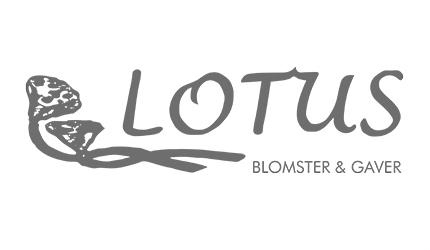 Lotus Blomster